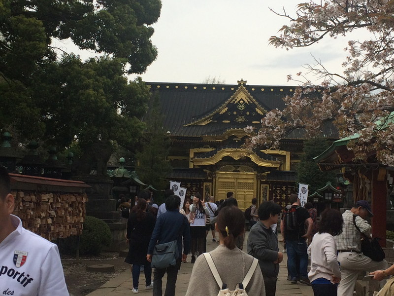 2016 Toshogu Shrine 20_resized